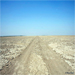 Fascinating Rann: